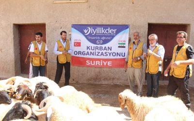 توزيع 110 اضاحي في الداخل السوري و 500 حصة لحمة للسوريين في مدينة غازي عنتاب